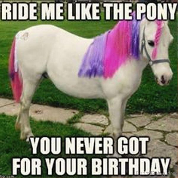 Ride Me Like The Pony