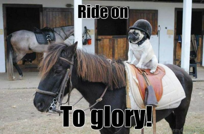 Ride-On-To-Glory.jpg