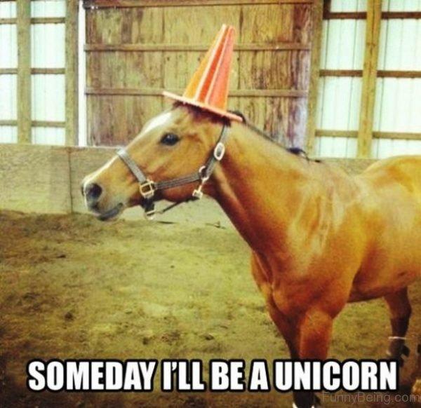Someday Ill Be A Unicorn