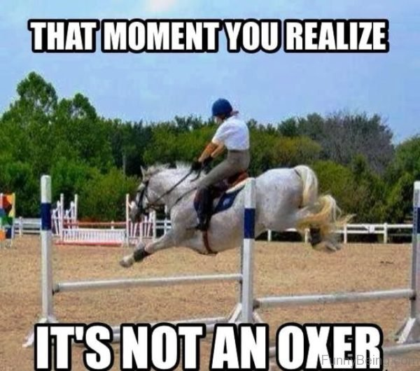That Moment You Realize Its Not An Oxer
