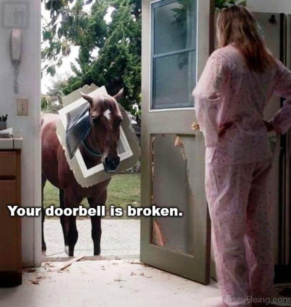 Your Doorbell Is Broken