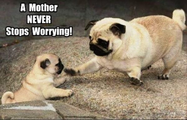 A Mother Never Stops Worrying