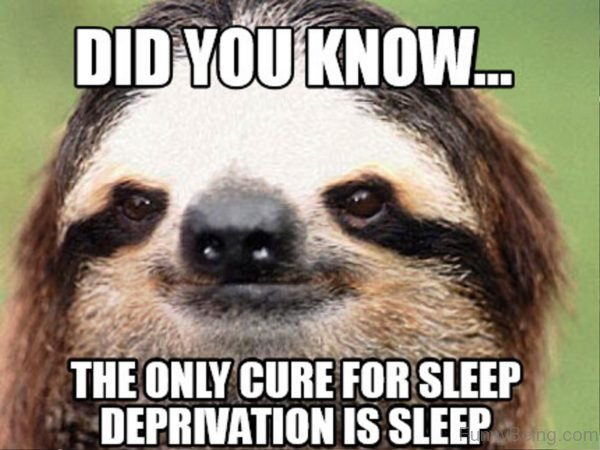 Did You Know The Only Cyre For Sleep