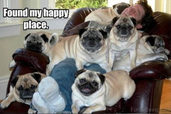 Found My Happy Place