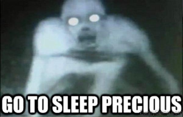 Go To Sleep Precious