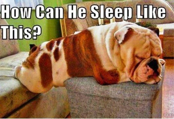 How Can He Sleep Like This