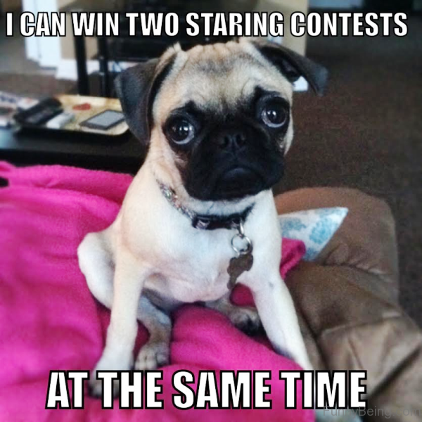 I Can Win Two Staring Contests