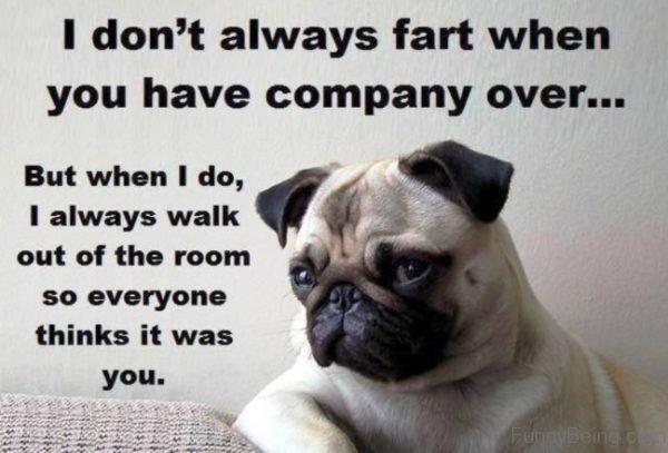 I Dont Always Fart