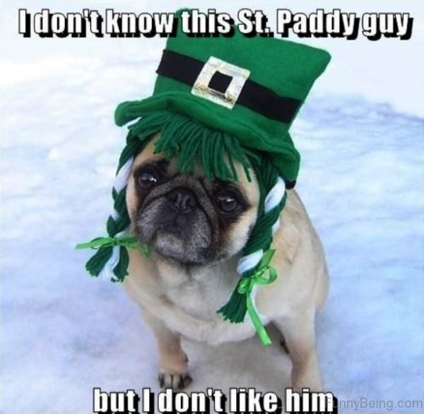 I Dont Know This St Paddy Guy