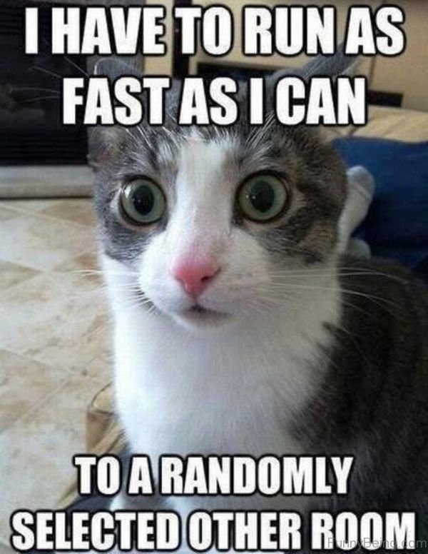 I Have To Run As Fast As I Can