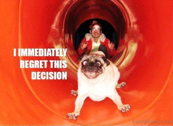 I Immediately Regret This Decision