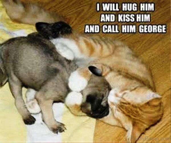 I Will Hug Him