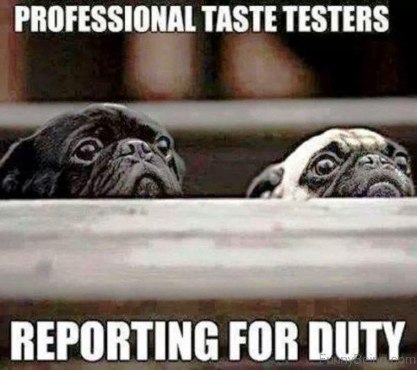 Professional Taste Testers