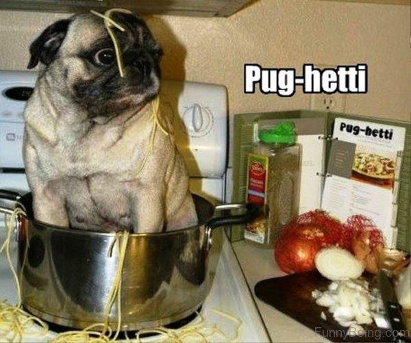 Pug Hetti