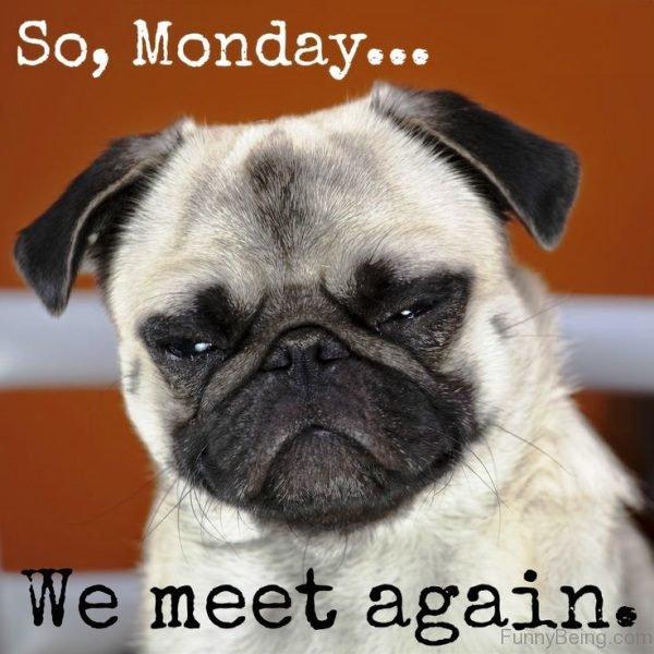 So Monday We Meet Again