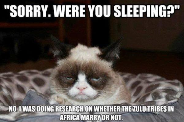 Sorry Were You Sleeping