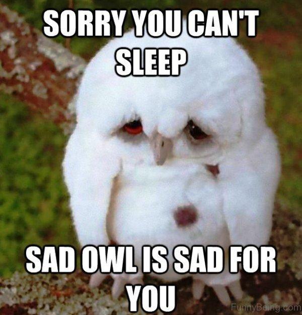 Sorry You Cant Sleep