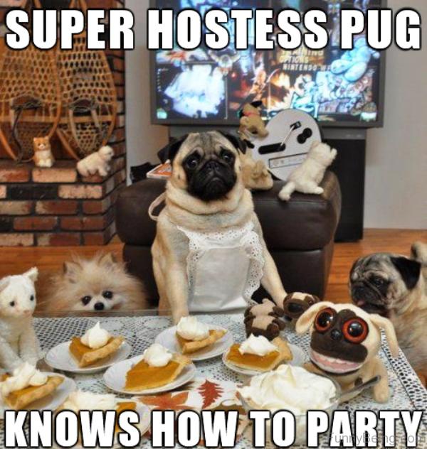 Super Hostess Pug