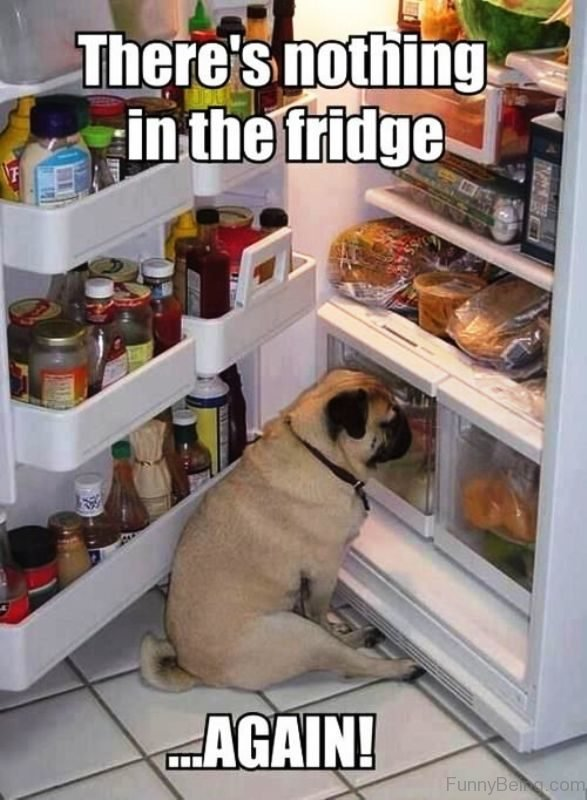 Theres Nothing In The Fridge