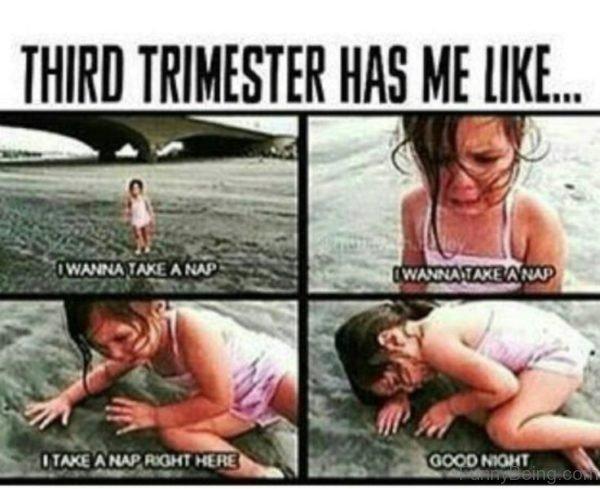 Third Trimester Has Me Like