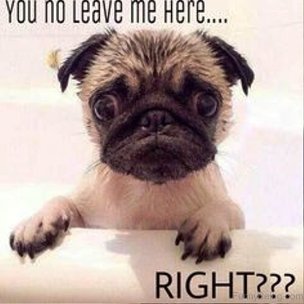 You No Leave Me Here