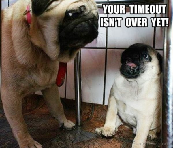 Your Timeout Isnt Over Yet
