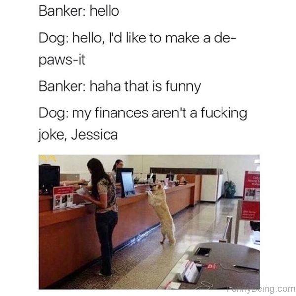 Banker Vs Dog