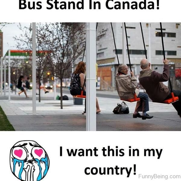 Bus Stand In Canada
