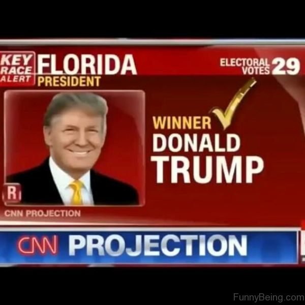 CNN Projection