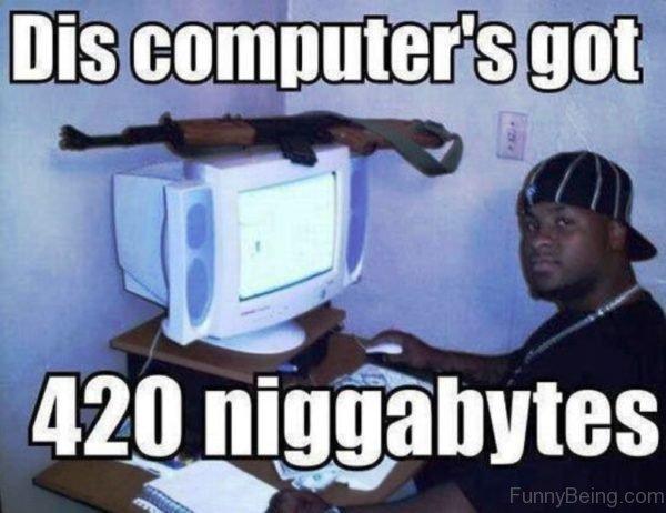 Dis Computer Got 420 Niggabytes