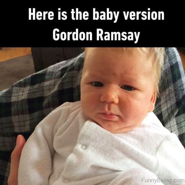 Here Is The Baby Version Of Gordon Ramsay