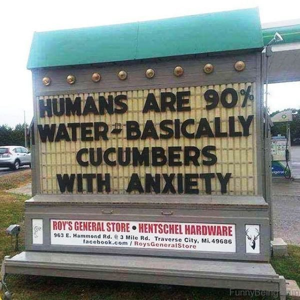 Humans Are 90 Percent Water Basically