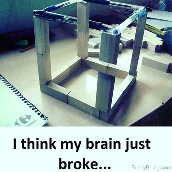 I Think My Brain Just Broke