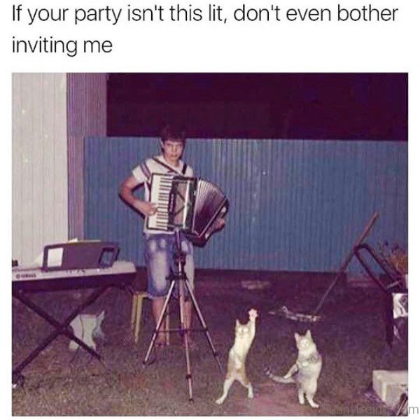 If Your Party Isnt This Lit