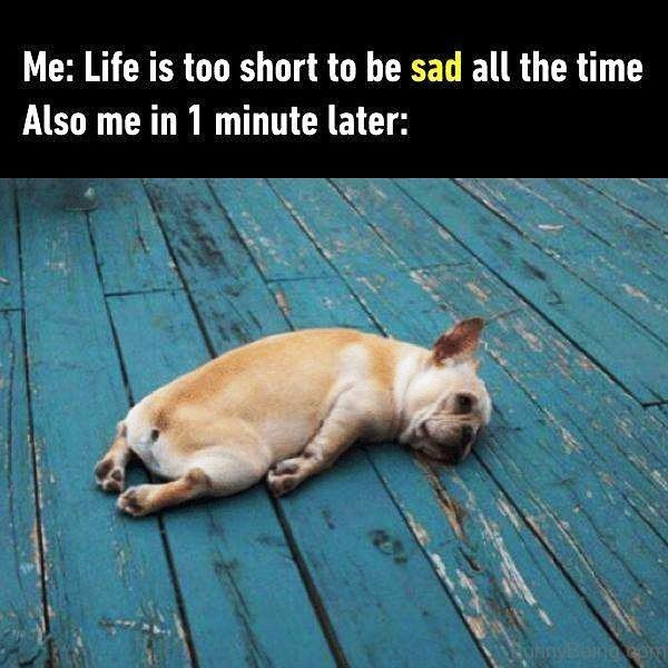 Life Is Too Short To Be Sad All The Time