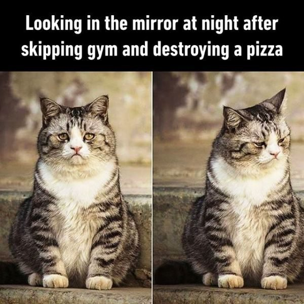 Looking In The Mirror At Night After