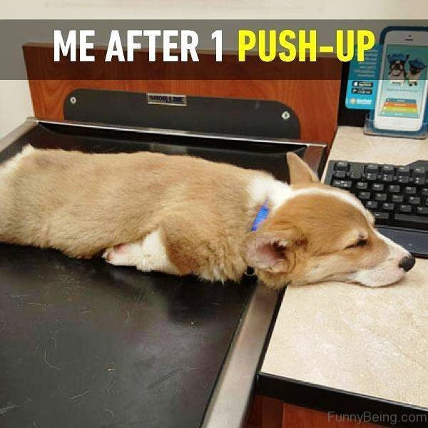 Me After 1 Push Up