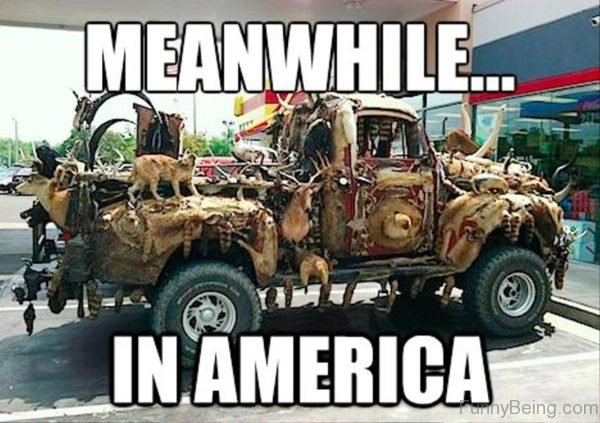 Meanwhile In America Image