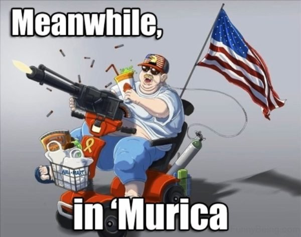 Meanwhile In Murica