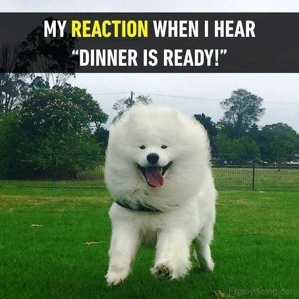My Reaction When I Hear
