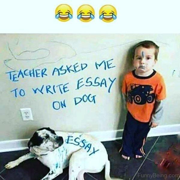 Teacher Asked Me To Write Essay On Dog