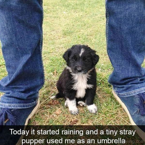 Today It Started Raining