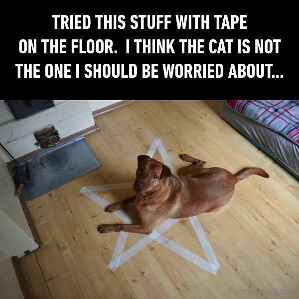 Tried This Stuff With Tape On The Floor