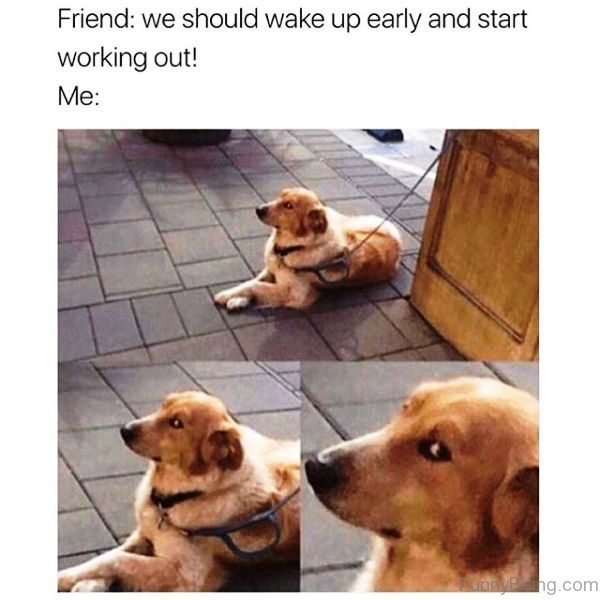 We Should Wake Up Early