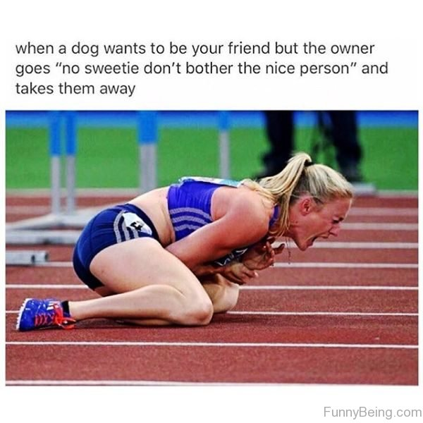 When A Dog Wants To Be Your Friend