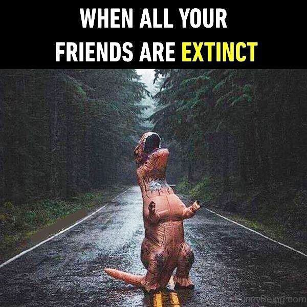 When All Your Friends Are Extinct