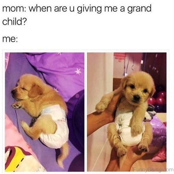 When Are You Giving Me A Grand Child