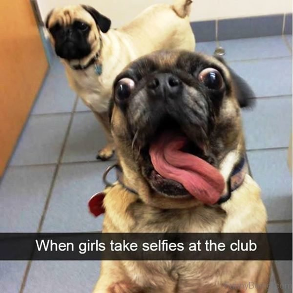 When Girls Take Selfie At The Club