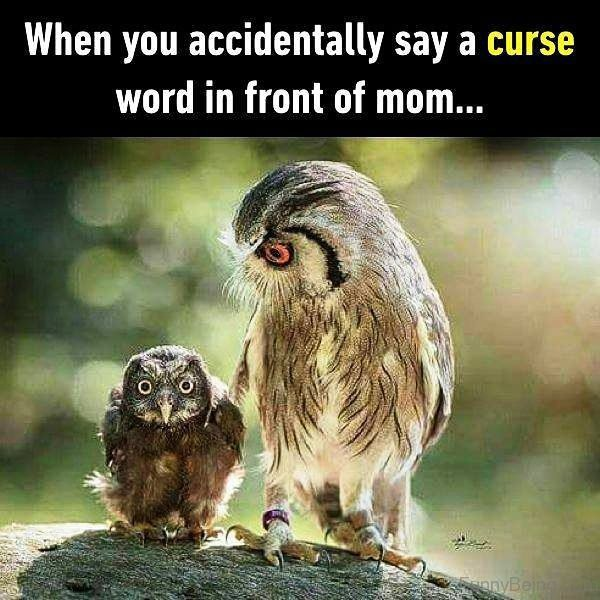 When You Accidentally Say A Curse Word