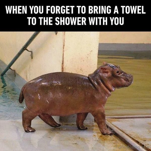 When You Forget To Bring A Towel